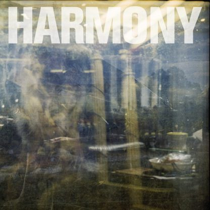 Harmony Double Negative LP